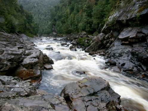 Newland's Cascades 1