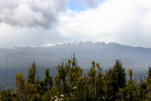 Prince of Wales Range glimpsed between snow squalls from the summit of the Princess Range